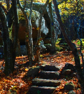 Lonely trails can lead to beautiful places.  I've photoshopped this segment of a photo I took on a hike some years ago on the Appalachian Trail in Virginia.